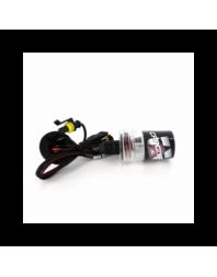 BEC XENON H8-6000K - Carguard - Becuri Xenon