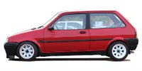 Rover 100 | 90-98
